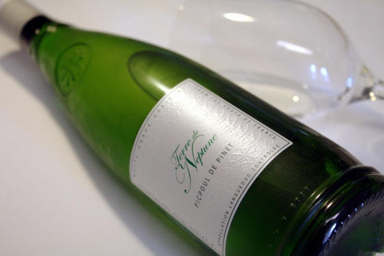Wino Wednesday // Terre de Neptune Picpoul de Pinet 2013